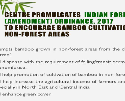 indian-forest-amendment-ordinance